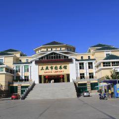 三亞市圖書館用戶圖片