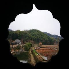 月山村用戶圖片