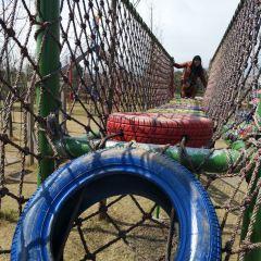 야린 현대농업원(원저우) 여행 사진