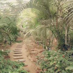 玉黛湖生態鄉村莊園用戶圖片