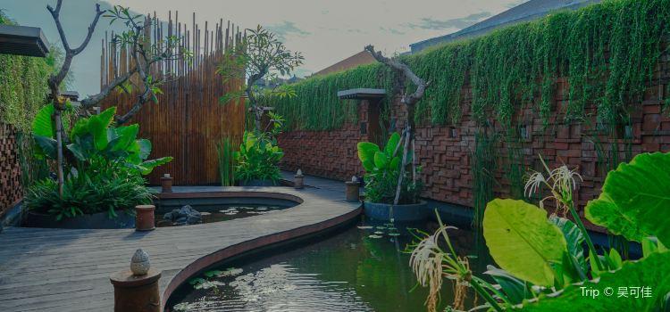 Taman Air Spa Bali3
