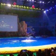The Huaxia Ocean Park User Photo