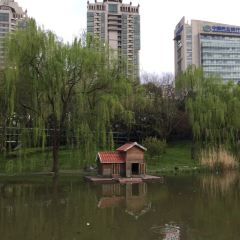 西洋橋公園用戶圖片