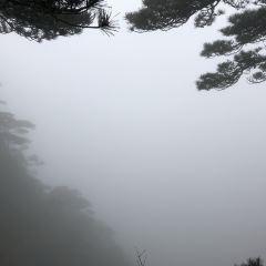 陽光海岸景區用戶圖片