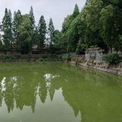 Yinma Pool User Photo