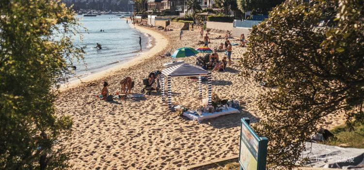 Manly Scenic Walkway1