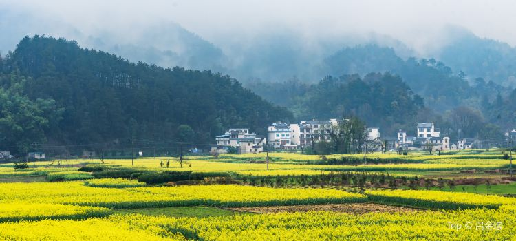 Xin'an River Landscape Gallery1