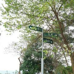 Shanding Park User Photo