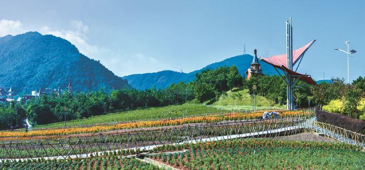 東部華僑城茶溪谷2