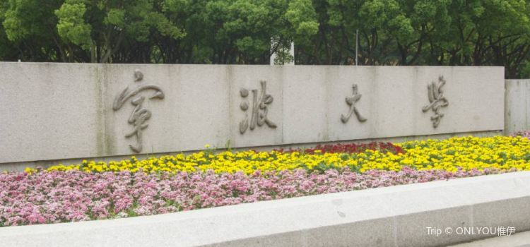 University of Ningbo1