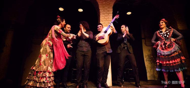 Museum of Flamenco Dance2