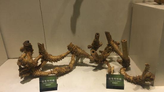 中國竹雕刻藝術館