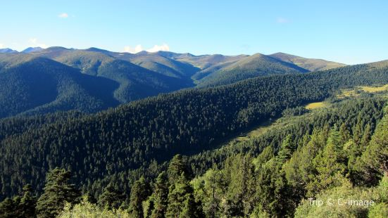 色季拉國家森林公園