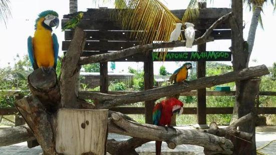 城の農場動物園
