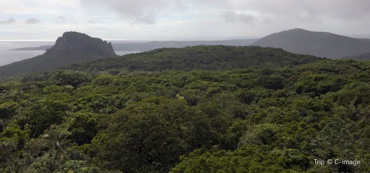 Kenting National Forest Recreation Area2