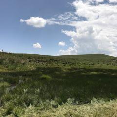Jinyintan Grasslands User Photo
