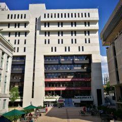 Commonwealth Avenue Mall User Photo