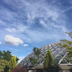 伊麗莎白女王公園用戶圖片