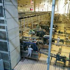 蒙牛工業旅遊景區用戶圖片