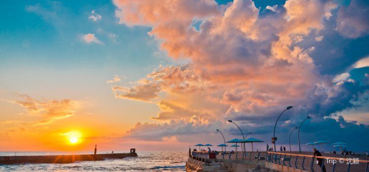 Mediterranean Region Turkey