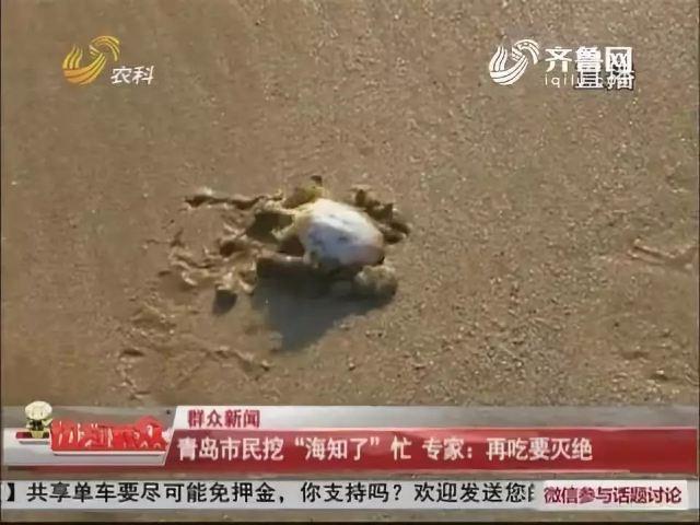 進擊吧!鮮控!吃遍黃渤海!