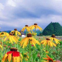 Dushan Tiandong Scenic Area User Photo