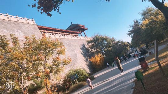 Dongzi Garden Scenic Area