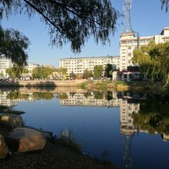 南湖公園用戶圖片