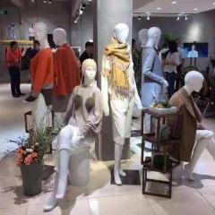 中國羊絨博物館用戶圖片