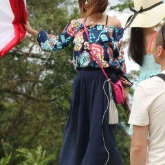 Samui Travel Follow Photography User Photo
