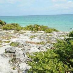 Tulum Archaeological Site User Photo