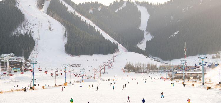 糸紬之路国際滑雪場1