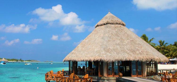 Conrad Maldives Rangali Island Travel Guidebook Must Visit