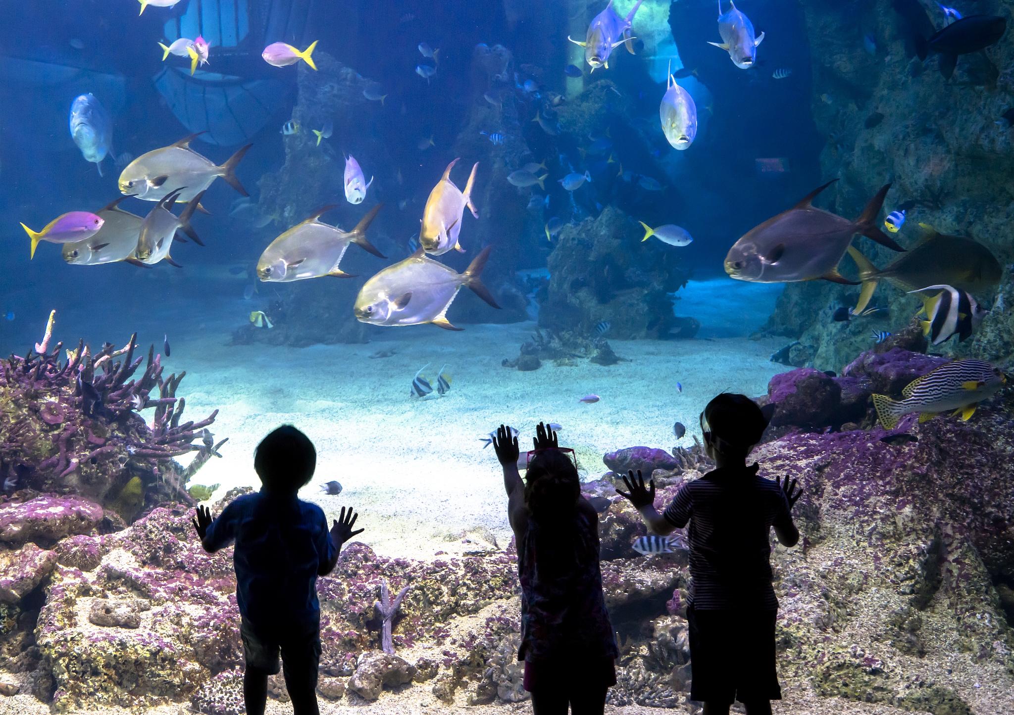 羅源灣海洋世界