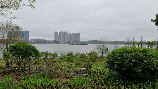 Baishi Lake Park
