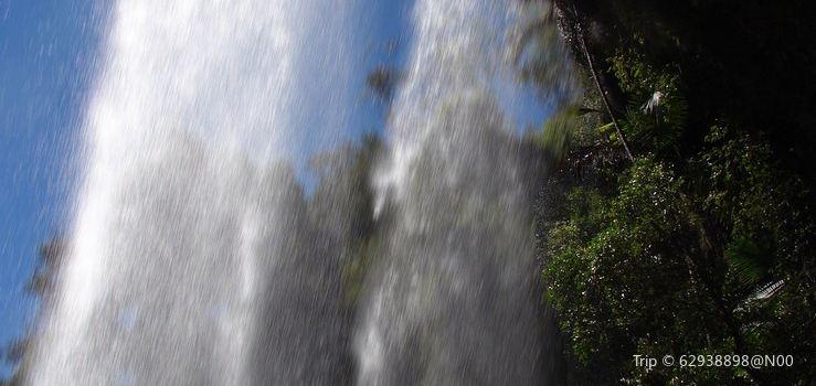 Springbrook National Park2