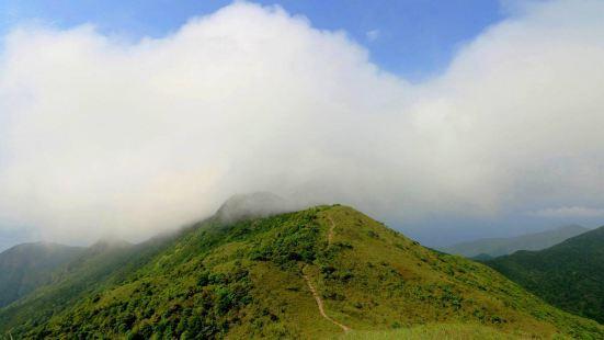 Qiniang Mountain