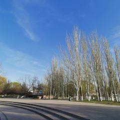 伊寧城市海景公園用戶圖片