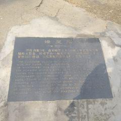 青島山炮台教育基地用戶圖片