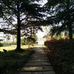 台北市泉源公園溫泉泡腳池園區用戶圖片