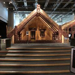 紐西蘭國家博物館用戶圖片