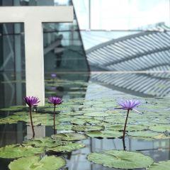 MAD Museum of Art & Design User Photo