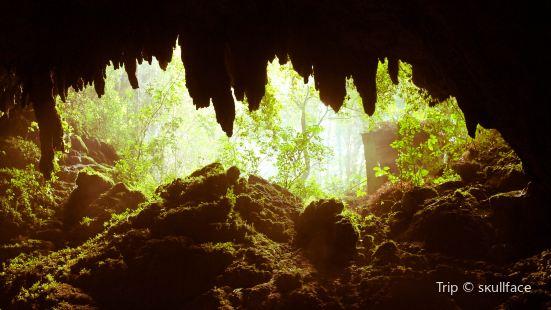 Parque Nacional de las Cavernas del Río Camuy