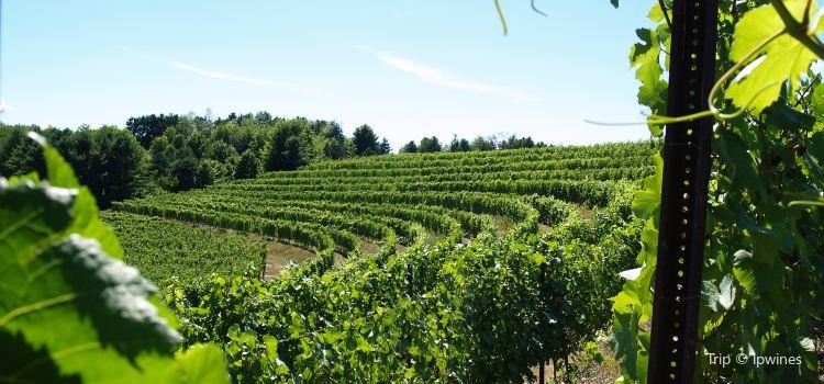 Black Star Farms Winery1