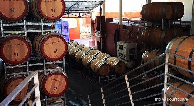 奔富葡萄酒莊3