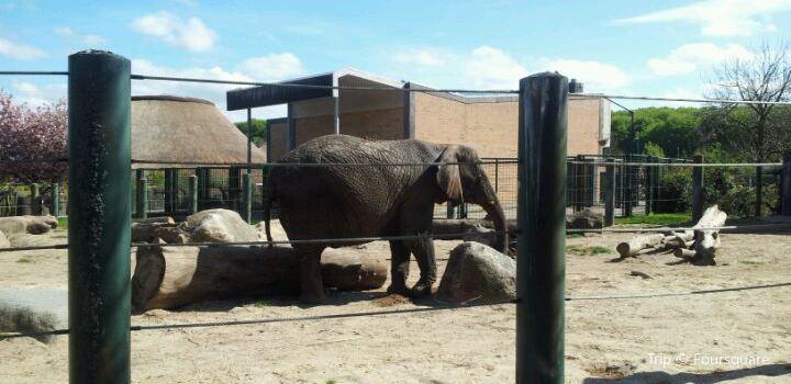Aalborg Zoo1