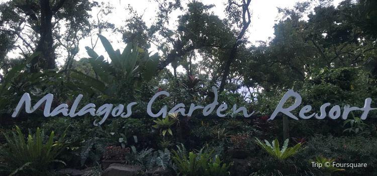 Malagos Garden Resort2
