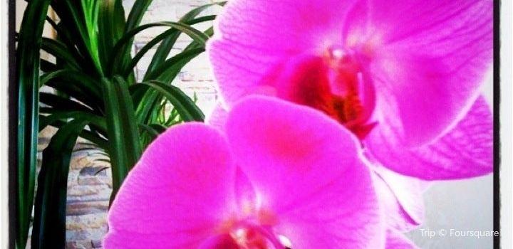 Luxury Thai Spa2
