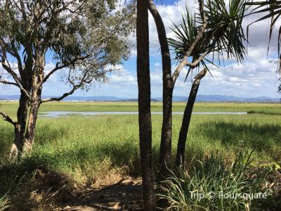 Townsville Town Common Conservation Park