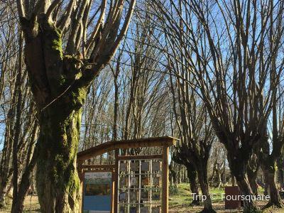 Balamba Tabiat Parki